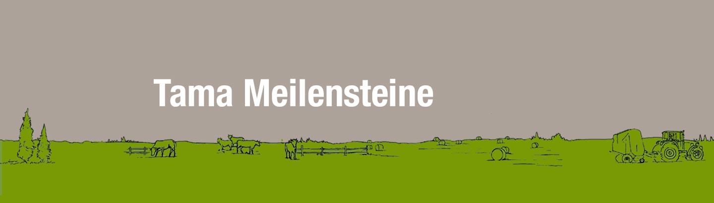 Tama Meilensteine
