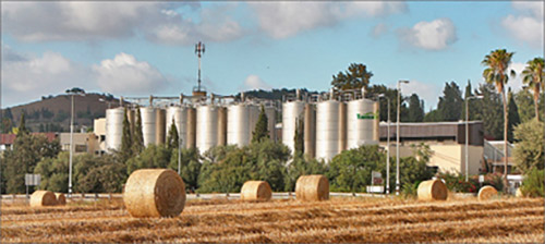 Im Kibbuz Mashmir Haemek gibt es auch eine Produktionsstätte. (Bilder zvg)