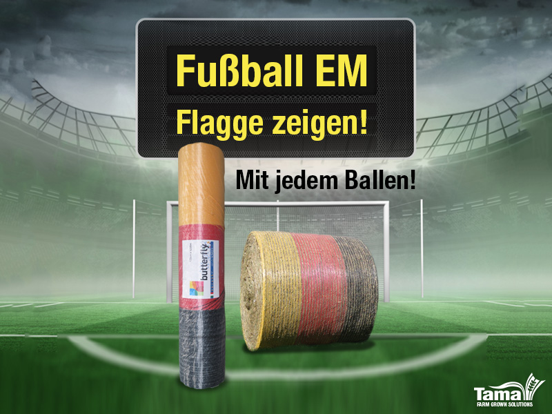 Fußball EM Flagge zeigen